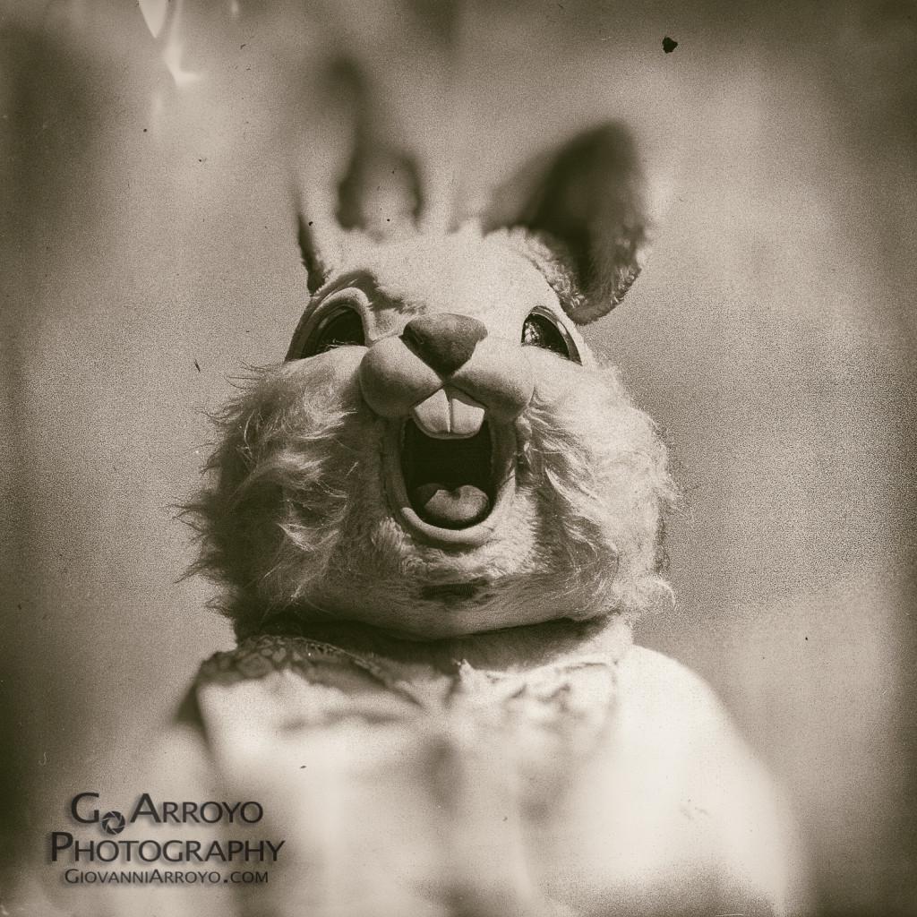 Freak Bunny 2