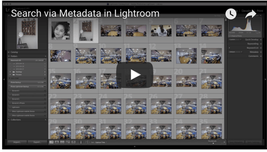 Search via Metadata in Lightroom